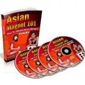 Asian Magnet 101 - Gold Package
